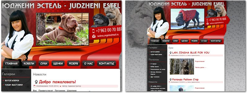 Сайт Питомник шарпеев